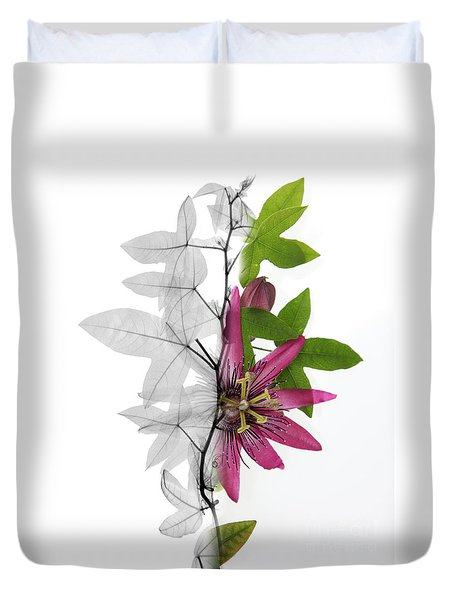 X-ray Of A Passion Flower Duvet Cover by Ted Kinsman