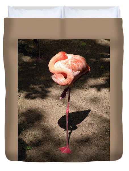 Duvet Cover featuring the photograph Xcaret Mexico Sleeping Flamingo by Dianne Levy