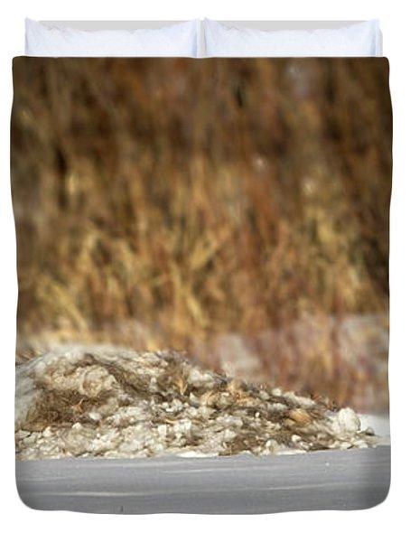 Yampa Glare  Duvet Cover