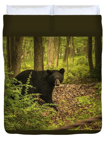 Yearling Black Bear Duvet Cover