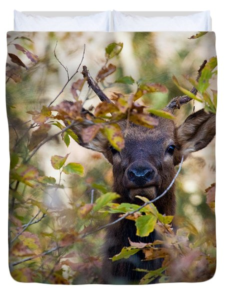 Duvet Cover featuring the photograph Yearling Elk Peeking Through Brush by Michael Dougherty