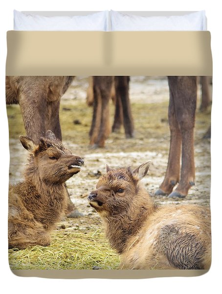 Duvet Cover featuring the photograph Yearlings by Jeff Swan