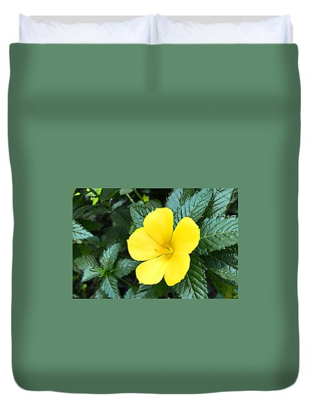 Yellow Alder Flower Duvet Cover