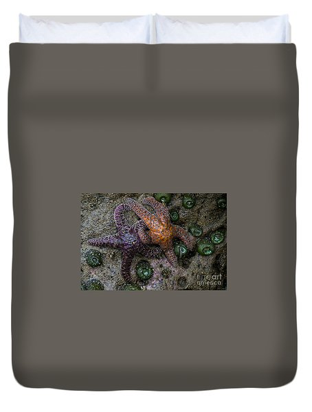 Orange And Purple Starfish II Duvet Cover