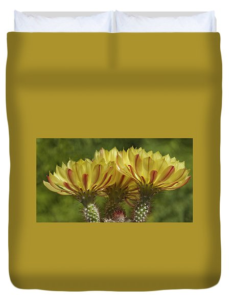 Yellow And Red Cactus Flowers Duvet Cover