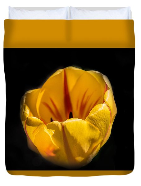 Yellow And Red Tulip Duvet Cover