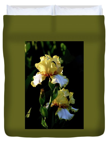 Yellow And White Irises 6681 H_2 Duvet Cover