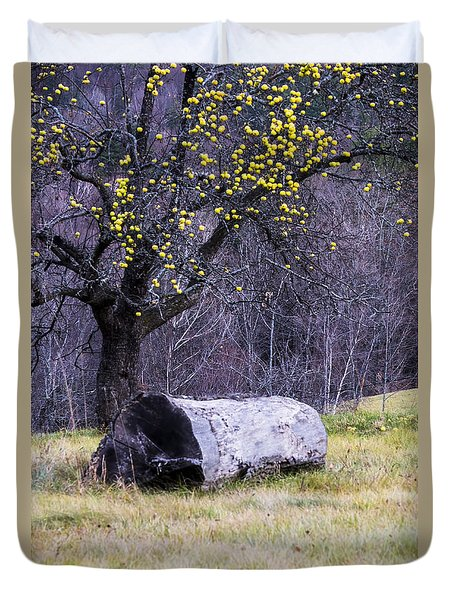 Yellow Apples Duvet Cover by Tom Singleton