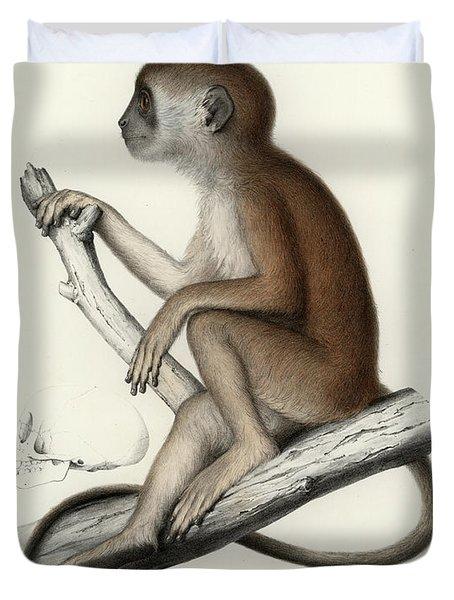 Yellow Baboon, Papio Cynocephalus Duvet Cover