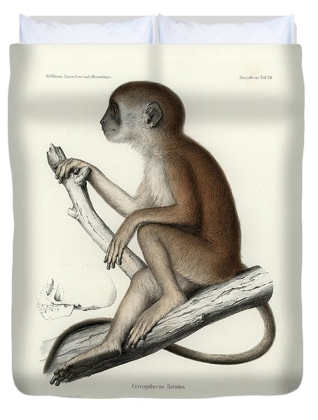 Yellow Baboon, Papio Cynocephalus Duvet Cover