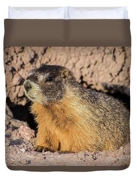 Yellow-bellied Marmot - Capitol Reef National Park Duvet Cover