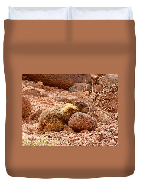 Duvet Cover featuring the photograph Yellow Bellied Marmot Capitol Reef Utah by Deborah Moen