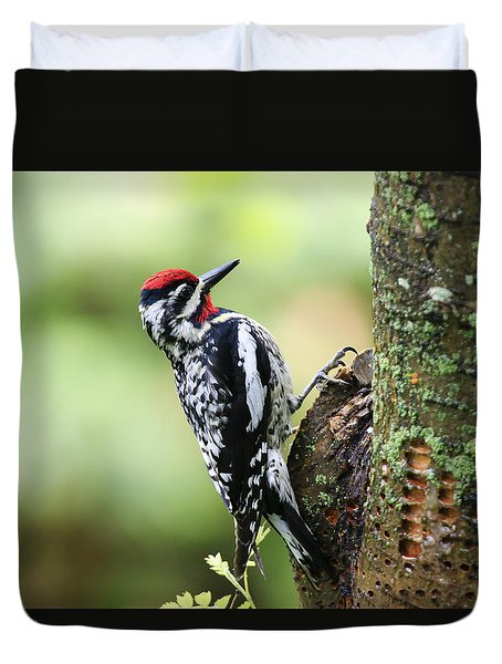 Duvet Cover featuring the photograph Yellow-bellied Sapsucker by Gary Hall