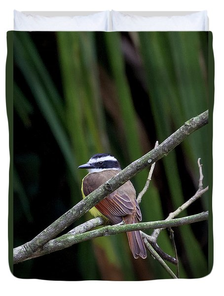 Duvet Cover featuring the photograph Yellow Breasted Chat by John Haldane