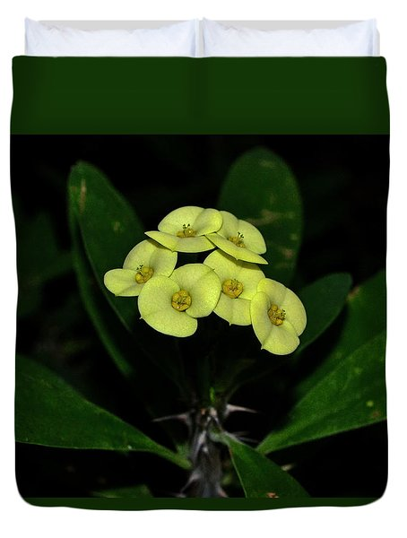 Duvet Cover featuring the photograph Yellow Cactus Flowers 001 by George Bostian
