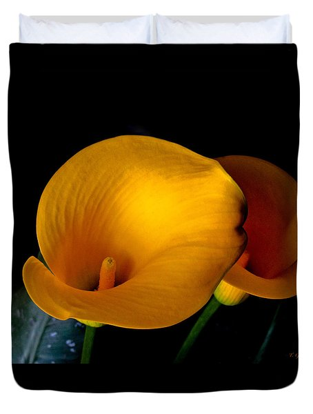 Yellow Calla Lilies - 02 Duvet Cover by Tony Grider