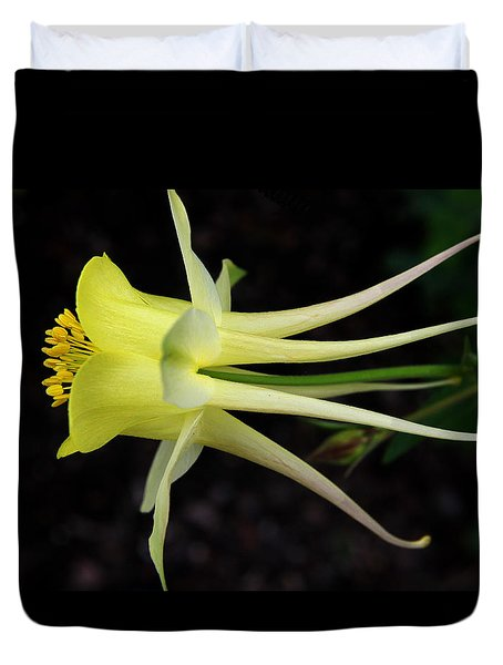 Yellow Columbine 2 Duvet Cover by Judy Vincent