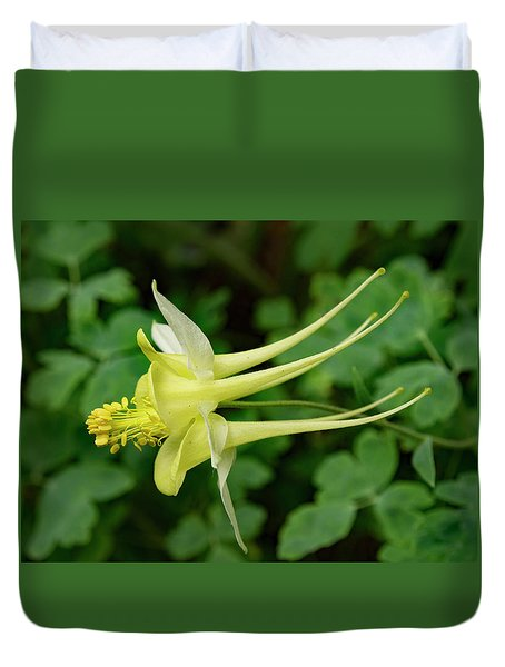 Duvet Cover featuring the photograph Yellow Columbine Profile by Jean Noren