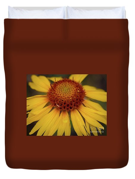 Yellow Cone Flower Duvet Cover by John Roberts