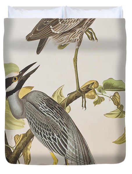 Yellow Crowned Heron Duvet Cover by John James Audubon