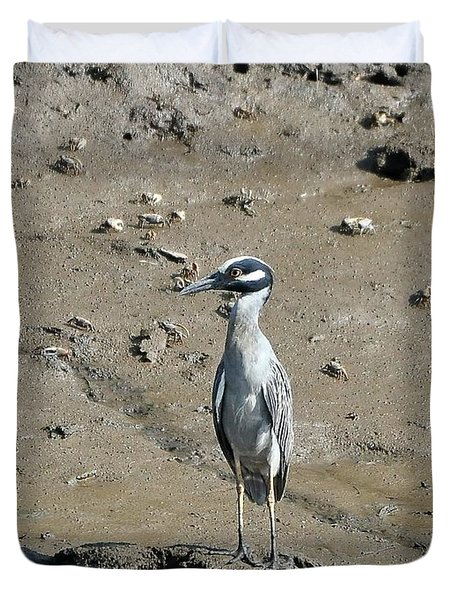 Yellow-crowned Night-heron Duvet Cover by Al Powell Photography USA