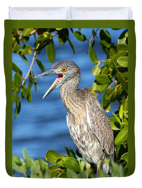 Yellow-crowned Night Heron Duvet Cover by Jennifer Zelik