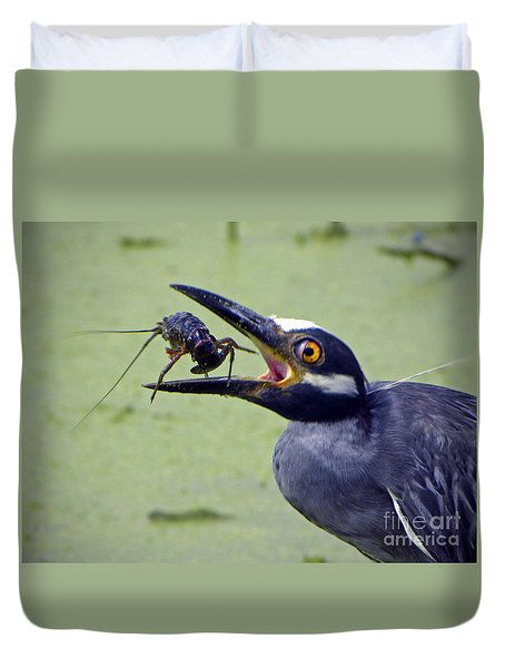 Duvet Cover featuring the photograph Yellow Crowned Night Heron  by Savannah Gibbs