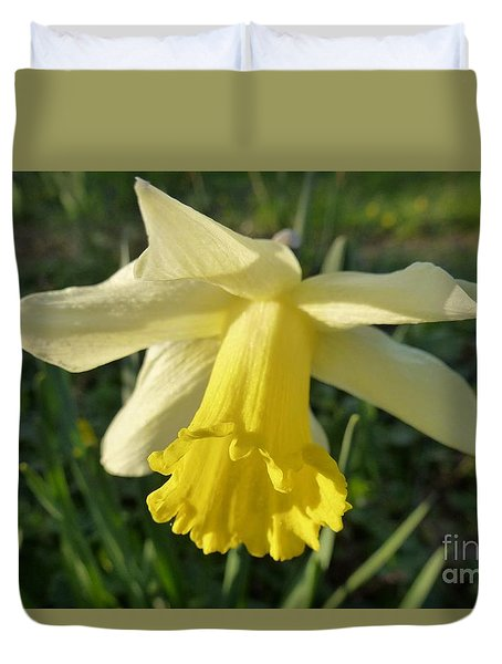 Yellow Daffodil 2 Duvet Cover by Jean Bernard Roussilhe