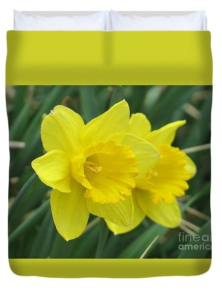 Yellow Daffodils Duvet Cover by Rod Ismay