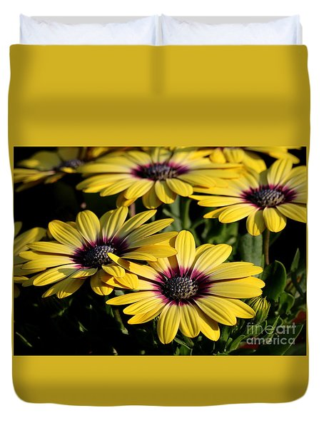 Duvet Cover featuring the photograph Yellow Daisy by Kenny Glotfelty