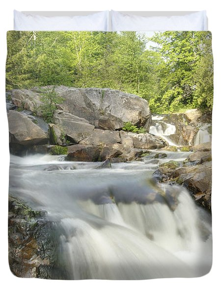 Yellow Dog Falls 4234 Duvet Cover by Michael Peychich