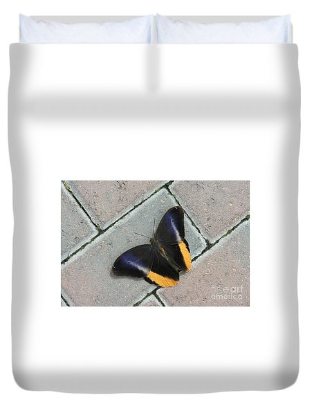 Yellow-edged Giant Owl Butterfly #5 Duvet Cover