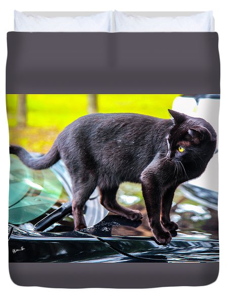 Duvet Cover featuring the photograph Yellow Eyed Cat by Madeline Ellis