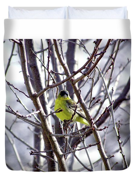 Duvet Cover featuring the photograph Yellow Finch by Bonnie Muir