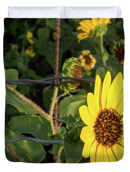 Yellow Flower Escaping From A Barb Wire Fence Duvet Cover