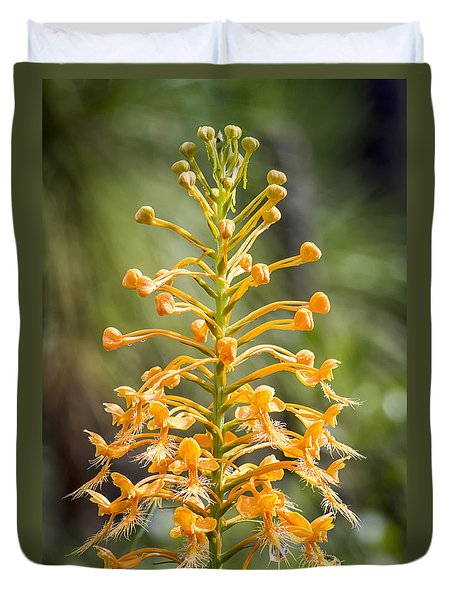 Duvet Cover featuring the photograph Yellow Fringed Orchid by Bob Decker
