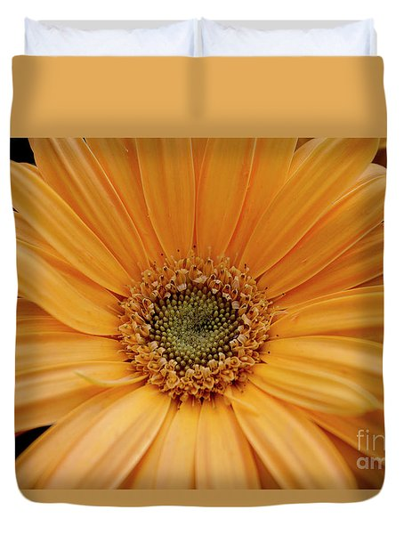 Yellow Gerbera Daisy Duvet Cover by Ivete Basso Photography