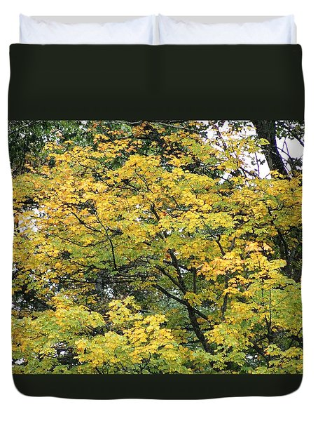 Yellow Gold Fall Tree Duvet Cover by Ellen O'Reilly