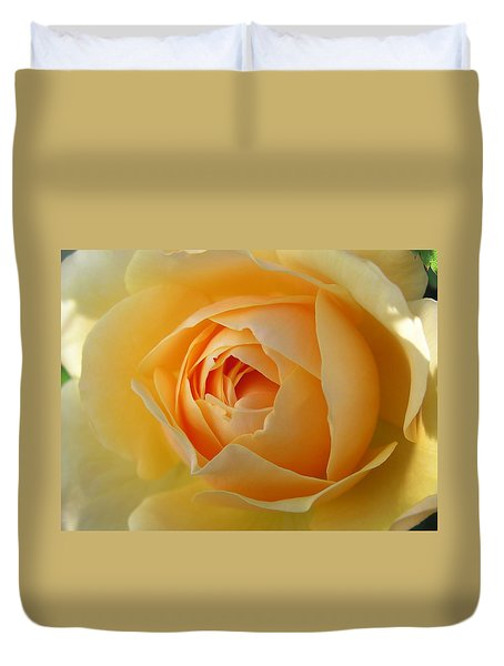 Duvet Cover featuring the photograph Yellow Graham Thomas Rose by Jocelyn Friis