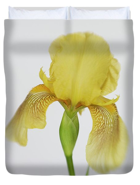 Duvet Cover featuring the photograph Yellow Iris A Symbol Of Passion by David and Carol Kelly