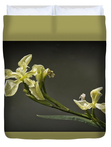 Duvet Cover featuring the photograph Yellow Iris by Shirley Mitchell