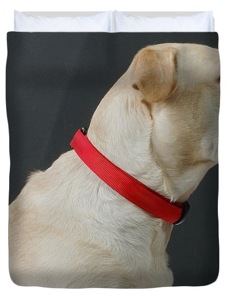 Yellow Lab Duvet Cover by Jerry McElroy