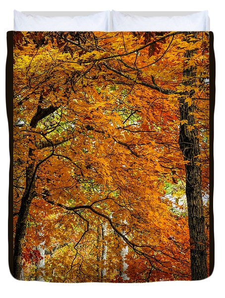 Duvet Cover featuring the photograph Yellow Leaves by Barbara Bowen