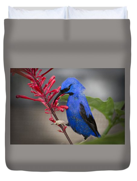 Yellow Legged Honey Creeper Duvet Cover