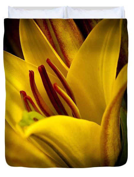 Yellow Lily Duvet Cover by David Patterson