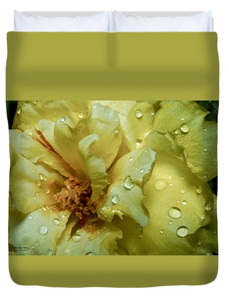 Yellow Moss Rose 1 Duvet Cover
