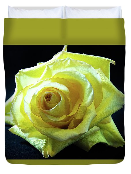 Yellow Rose-7 Duvet Cover