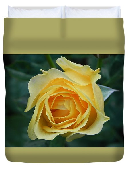 Yellow Rose Duvet Cover by John Parry