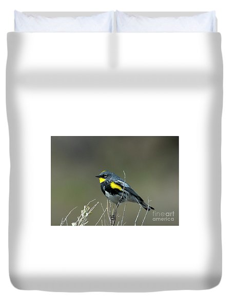 Duvet Cover featuring the photograph Yellow-rumped Warbler by Mike Dawson