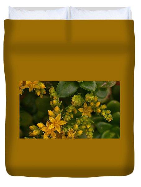 Yellow Sedum Duvet Cover